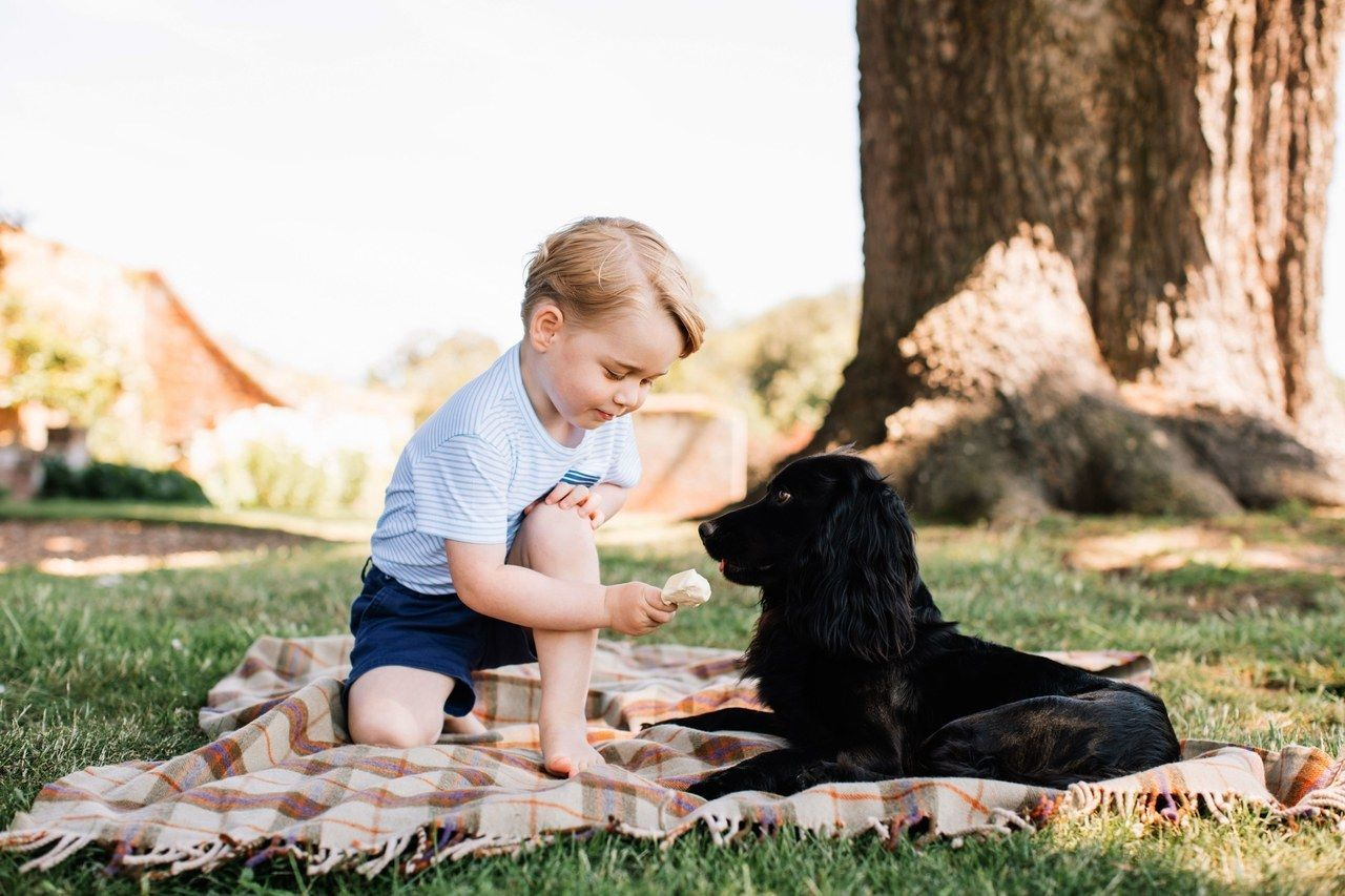 julkaisi by the Duke and Duchess of Cambridge of Prince George, who celebrates his third birthday today. The picture was taken at the family's Norfolk home in mid-July.
